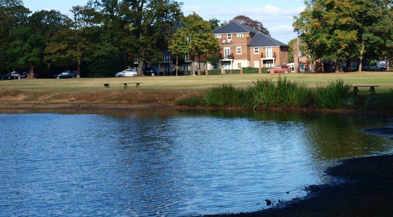 Shenfield common near hutton